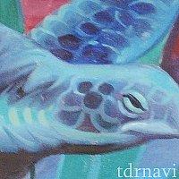 レールウェイ壁画:ウミガメ