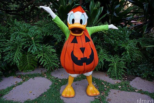 ドナルドはかぼちゃでした。ほかのキャラに比べて登場回数が少なかったです。