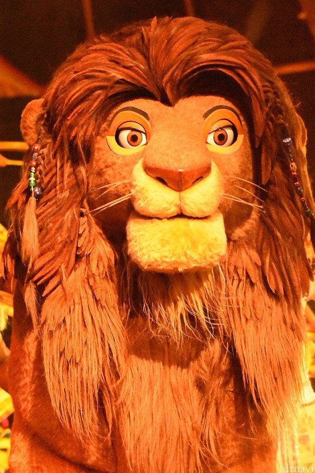 フェスティバル・オブ・ザ・ライオン・キング