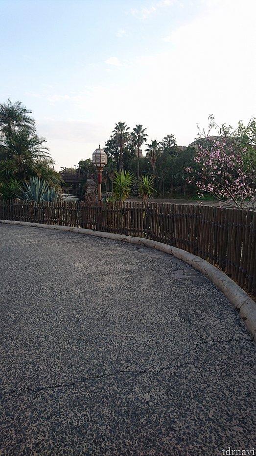 デイジーはこの柵に沿って並びます。