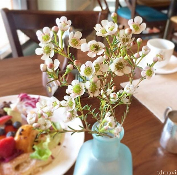 生花はテーブルごとに違う種類が。このことをSNSで報告したら「なんて素晴らしいおもてなし」と大好評でした。これは「ウメモドキ」。