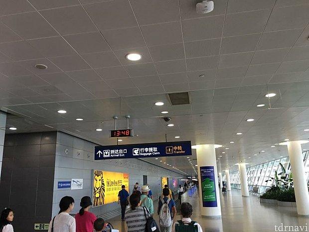 東浦空港到着歩きます!