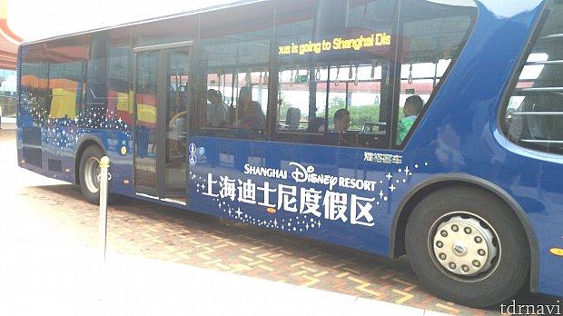 こちらがバスです!