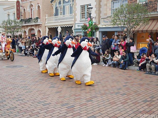 ペンギンたちがやたらとかわいかった!