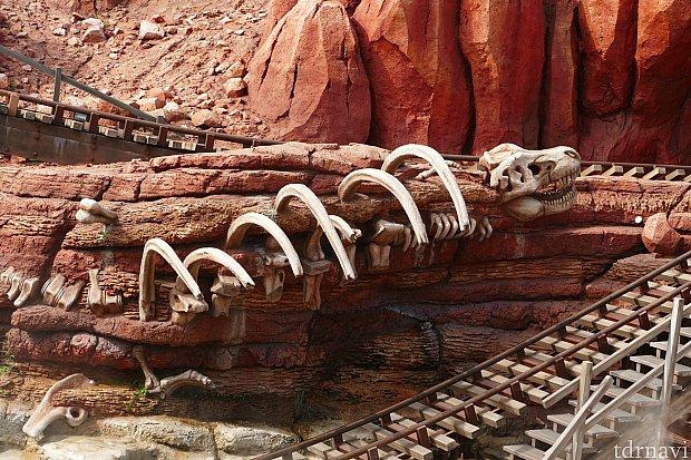 岩肌にはるか昔に絶滅したティラノサウルスの化石が・・・!