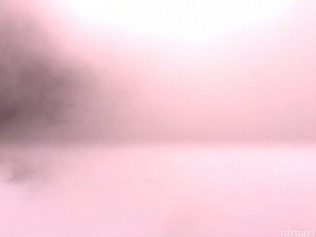 真っ白で何も見えない。
