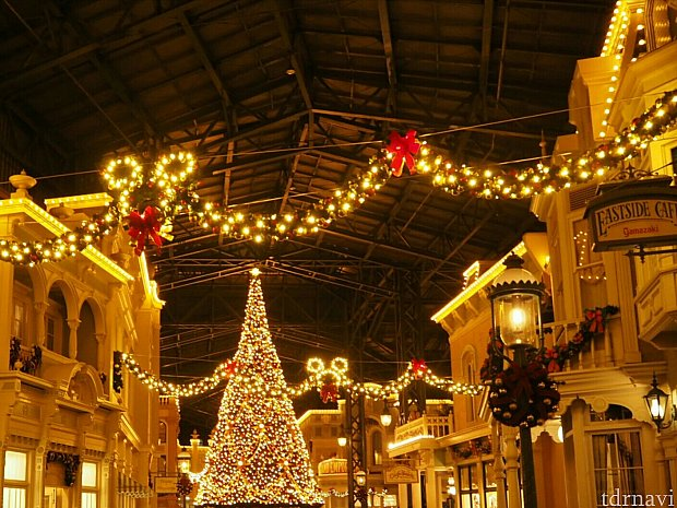 パーク内はクリスマス一色でした。