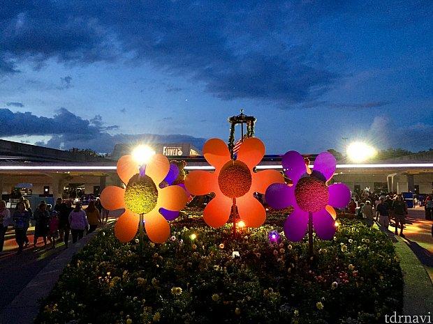 フラワー&ガーデンフェスティバルらしく、ポップな感じの花のデコレーションがエプコットの出口付近に。夜のライトアップに美しく映えていました。