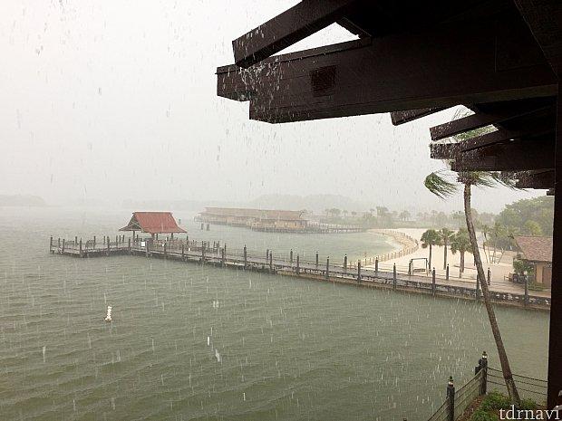 この日は夕方から豪雨で夜遅くまでずっと雨が降っていました。パークにそのままいたら大変な事に。