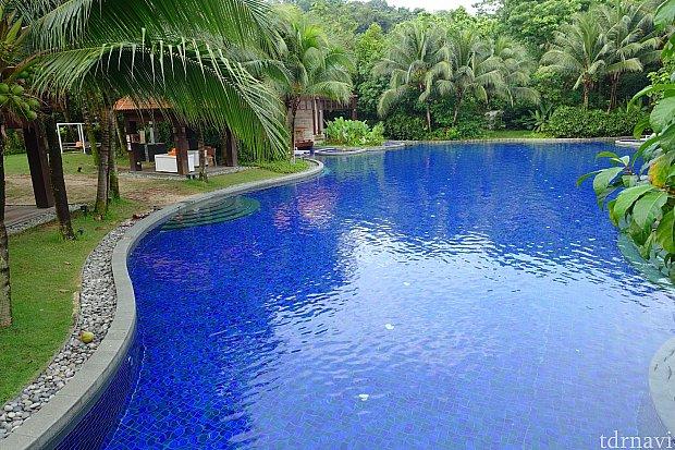 この広さ!ここで思いっきり泳げます。 これでプール全体の半分ほどしか写ってません。そして・・・