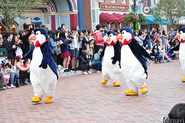 ペンギン達。