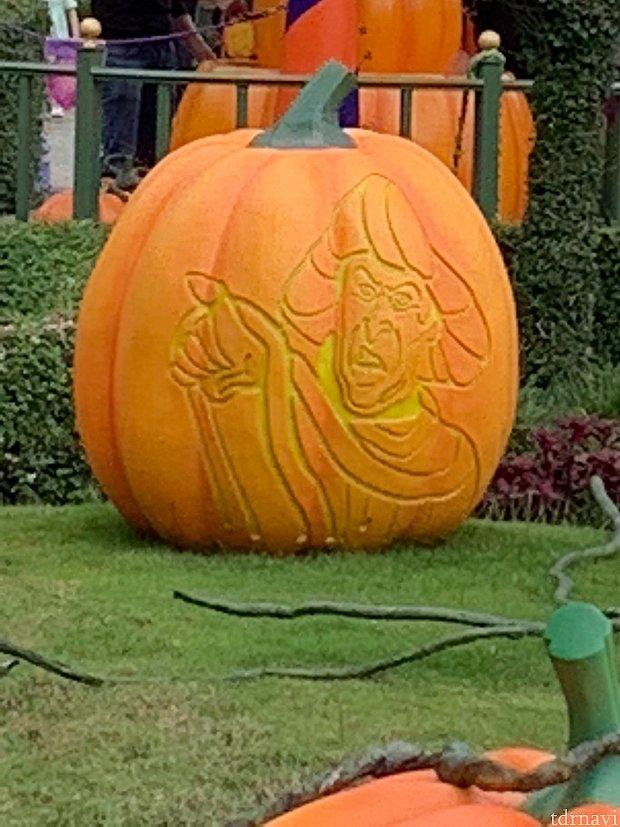 かぼちゃにも判事!