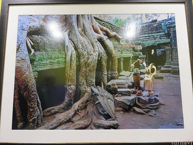 アドベンチャー・アウトポストに飾られている写真1