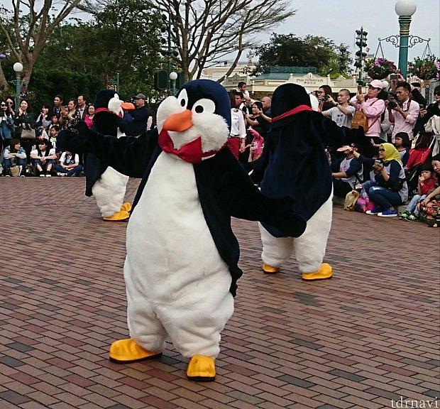 ペンギン達がなかなか集まりません💦