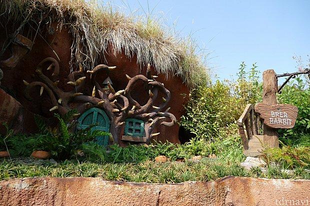 外のコースを進むとそこにはブレアラビットのお家が!!イバラの茂みの中に住んでるだけあってまわりはイバラで囲まれています。