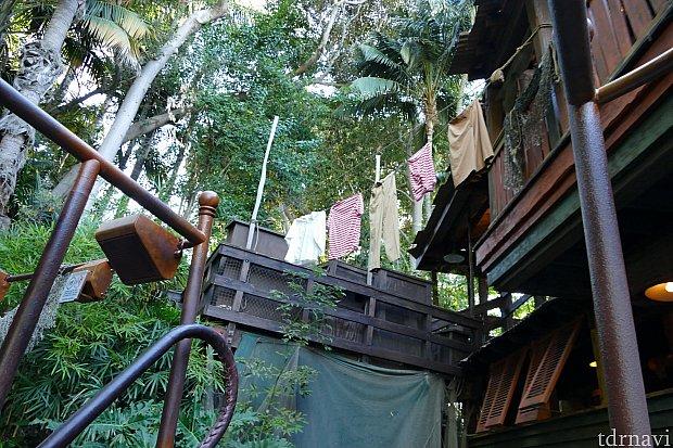 ボートに乗り込み船着き場を出発。そのときふと見上げるとたくさんの洗濯物が・・・!スキッパー達のジャングルでの生活を垣間みる事ができます