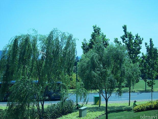 風が吹いて木の枝が揺れると、お城がちょっとだけ見える。