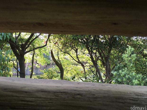 同じくサムクレメンズ砦から。この季節は緑も美しいですね。