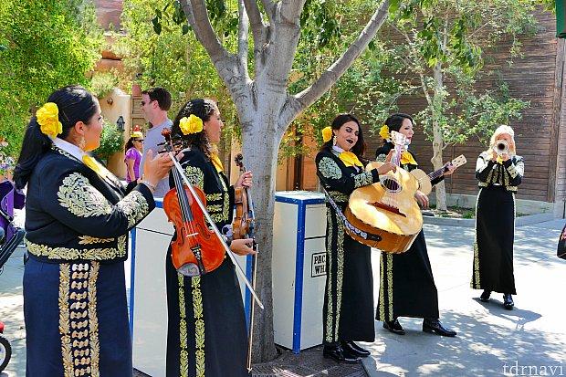 テラス席でメキシコ音楽を生演奏・生歌披露してくれます!