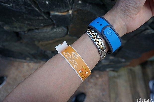 オレンジ色のバンドがイベントチケット購入済みって確認されるともらえるヤツです。なくさないようにすぐ付けましたよ!ちなみに青色のはマジックバンドです。