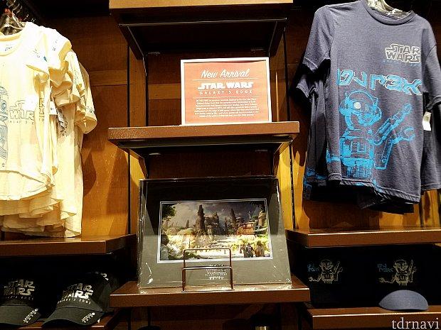 右のTシャツ $24.99 左のTシャツ $34.99