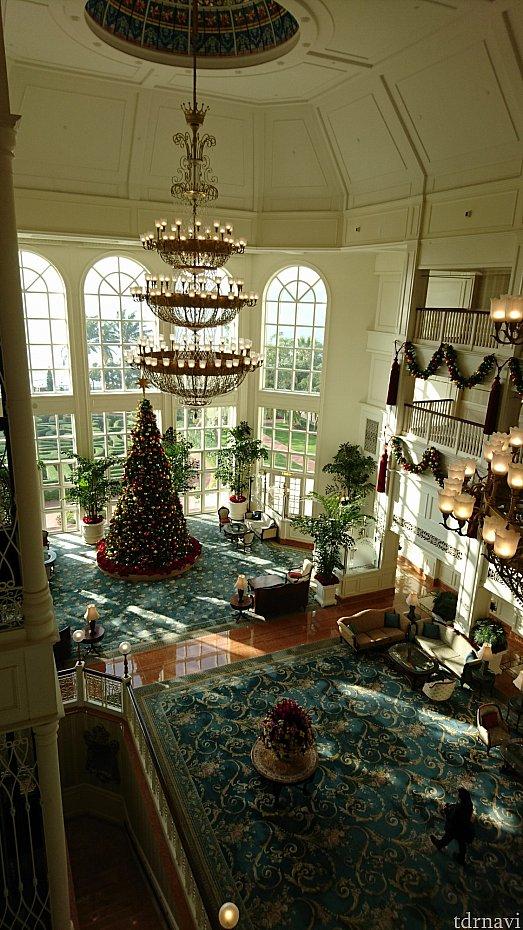 7階から見たツリー