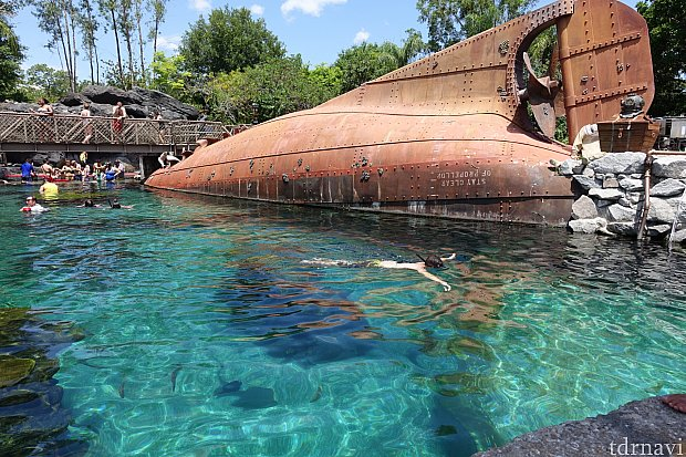 まずは沈没した船の中からシャーク・リーフをのぞいてみましょう。