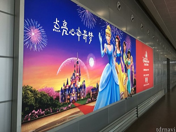 上海ディズニー来たヾ(@⌒ー⌒@)ノ