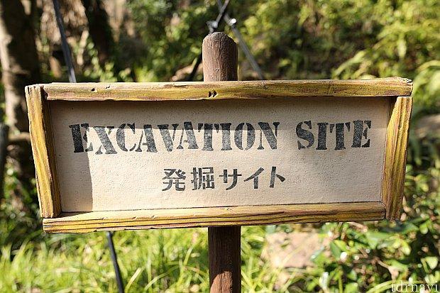 入り口が少し解り難いかも? 過去にミニーちゃんで並んでいるとグーフィーに並ぶつもりのご家族と一緒になった事があります。 看板があるので目印に 『発掘サイト』ミッキー 『自然観察サイト』ミニー 『神殿調査サイト』グーフィー