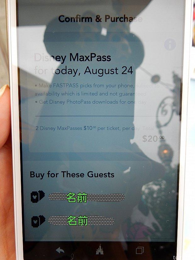 日付と合計金額を確認して、下の(写ってなくてごめんなさい)『Purchase』をタップ ※クレジットカードでの支払になります
