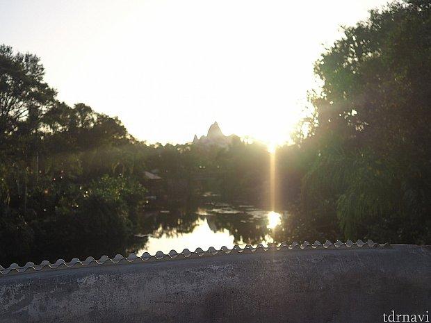 朝日が眩しい。こうやって景色だけ見ると、とてもパーク内とは思えない光景。
