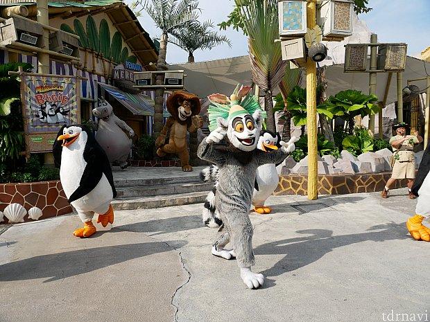 映画『ペンギンズ』の曲を使ってました😆