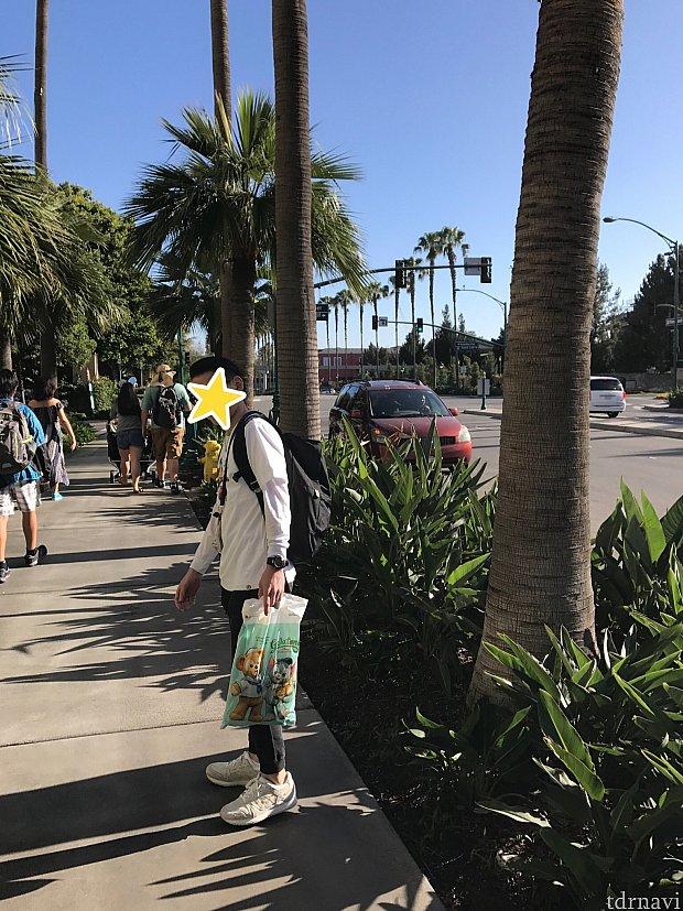 この道を通ってダウンタウンディズニーへ!!ヤシの木がたくさん♪カリフォルニアな風景です!