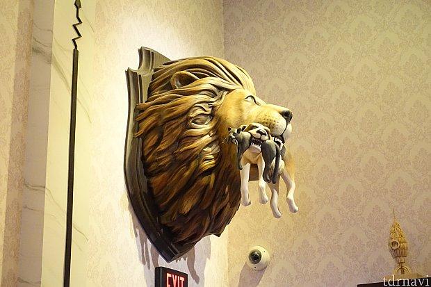 映画にも出てきたライオン