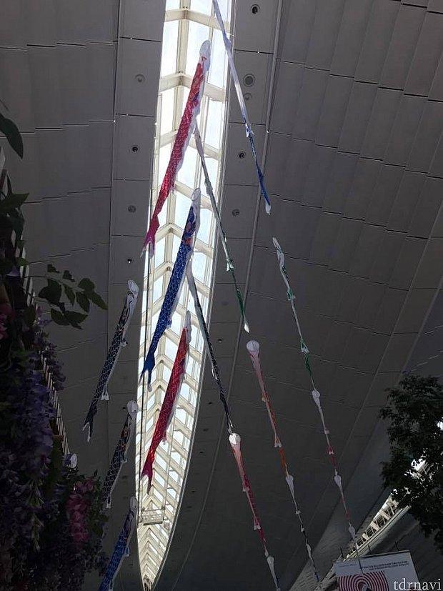 羽田国際線ターミナルでは、こいのぼりや🎏兜が飾ってありました!