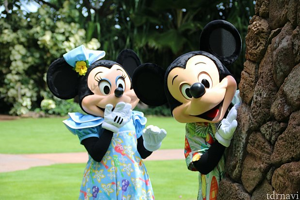 隠れんぼしていたミッキーとミニー。探す役はグーフィーでした(笑)
