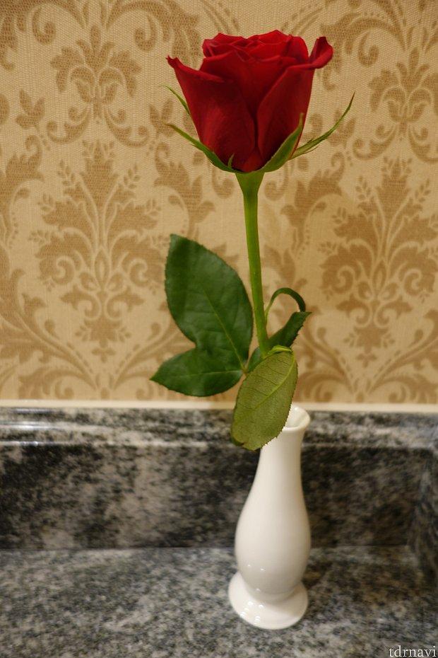 洗面台の隅には生花の一輪のバラ🌹がありました✨生花があるだけで豊かな感じがしますね♪持って撮影するとキマリますよ!