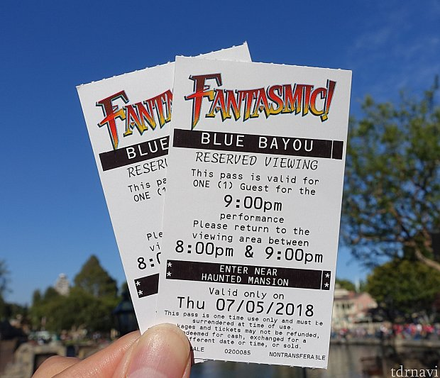 ファンタズミックの鑑賞エリア入場券。食後にもらえます。