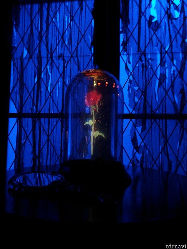 薔薇の花が西の塔の部屋にありました。