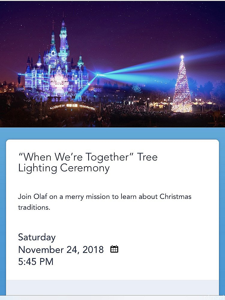 """⑤""""When We're Together"""" Tree Lighting Ceremony"""