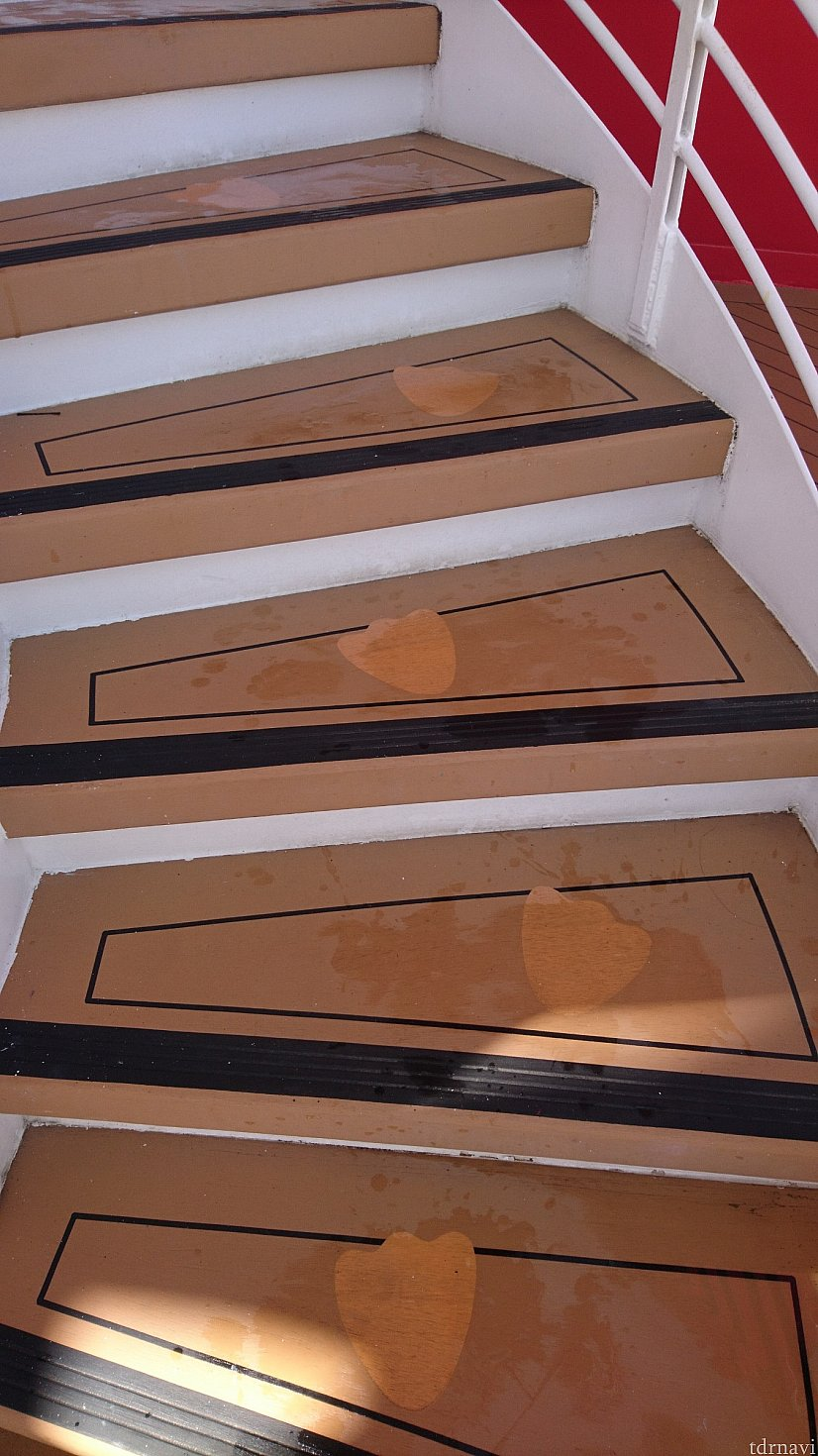 階段に足跡が👣