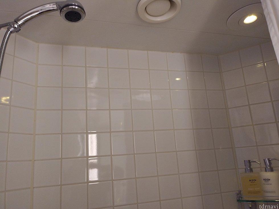 ハンドシャワーなのが嬉しい。