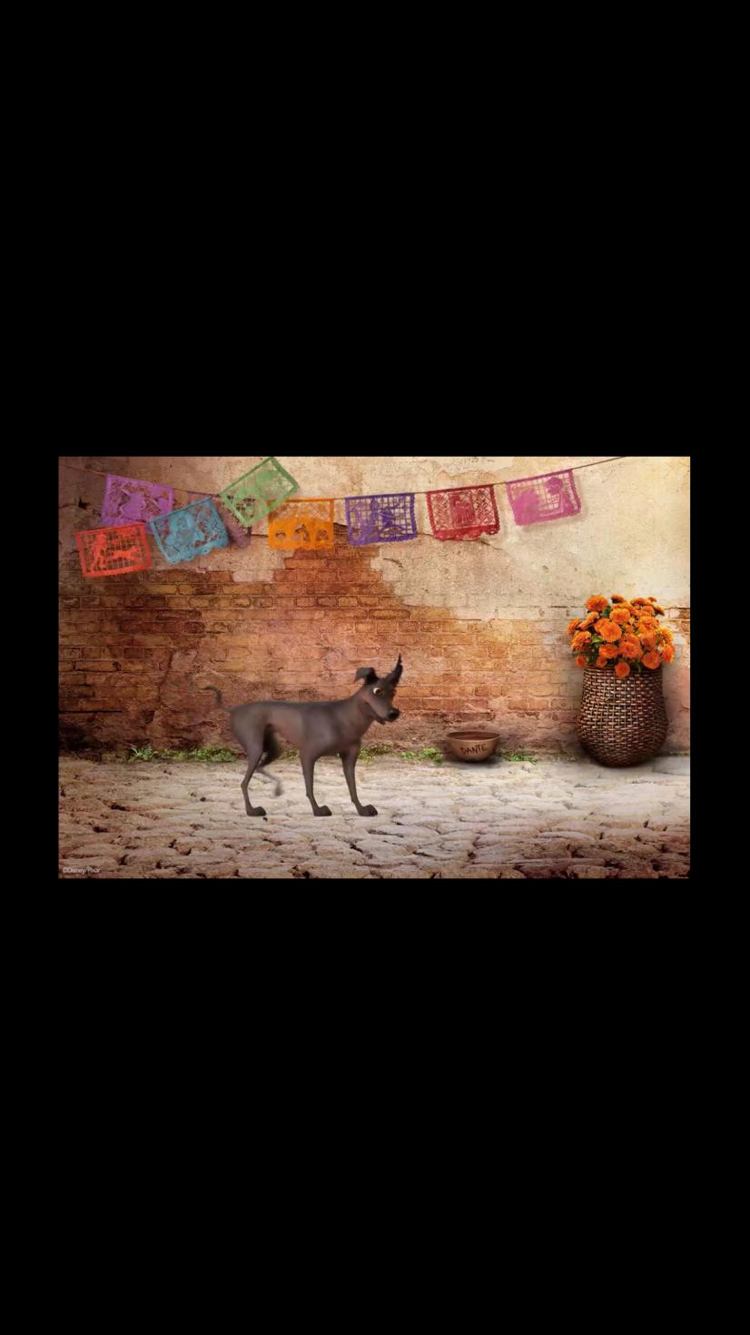 メキシカンのドナルドと撮ったメモリーメーカーのムービーの一部です。この後この犬が写真を舌で引っ張ります。 その写真はCOCOのロゴ入りです。