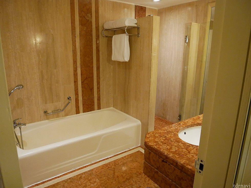 洗面所エリアにはバスタブとシャワー室の両方があります。