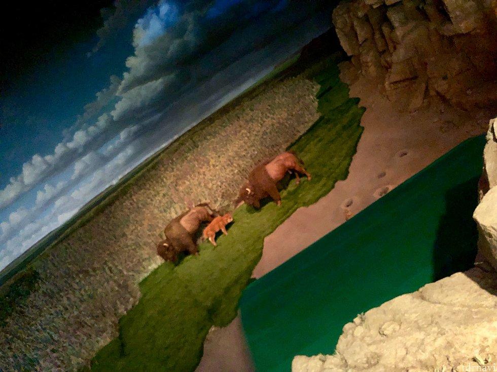 Living with the Landの前半部分はとても良く作られていて、地球のエコシステムを再現しています。