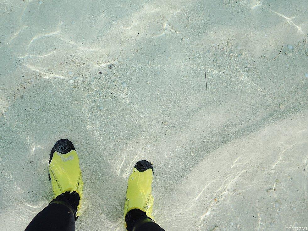 海はビックリする程、透明度が高かったです。