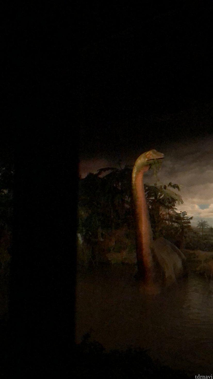 恐竜🦕スポット