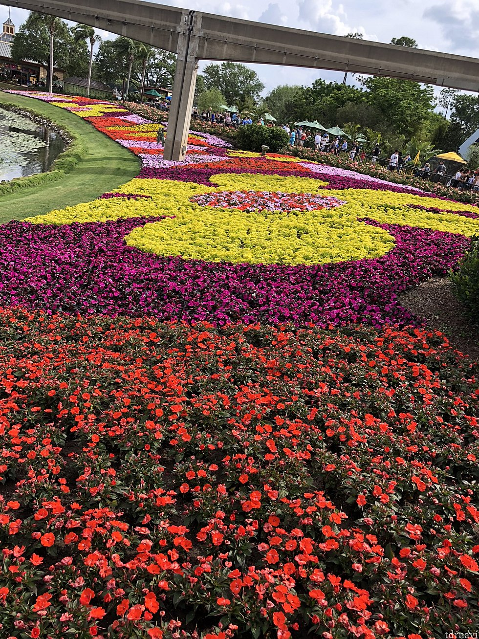 パーク全体が春一色!毎年この花壇の奇麗さには圧倒されます。
