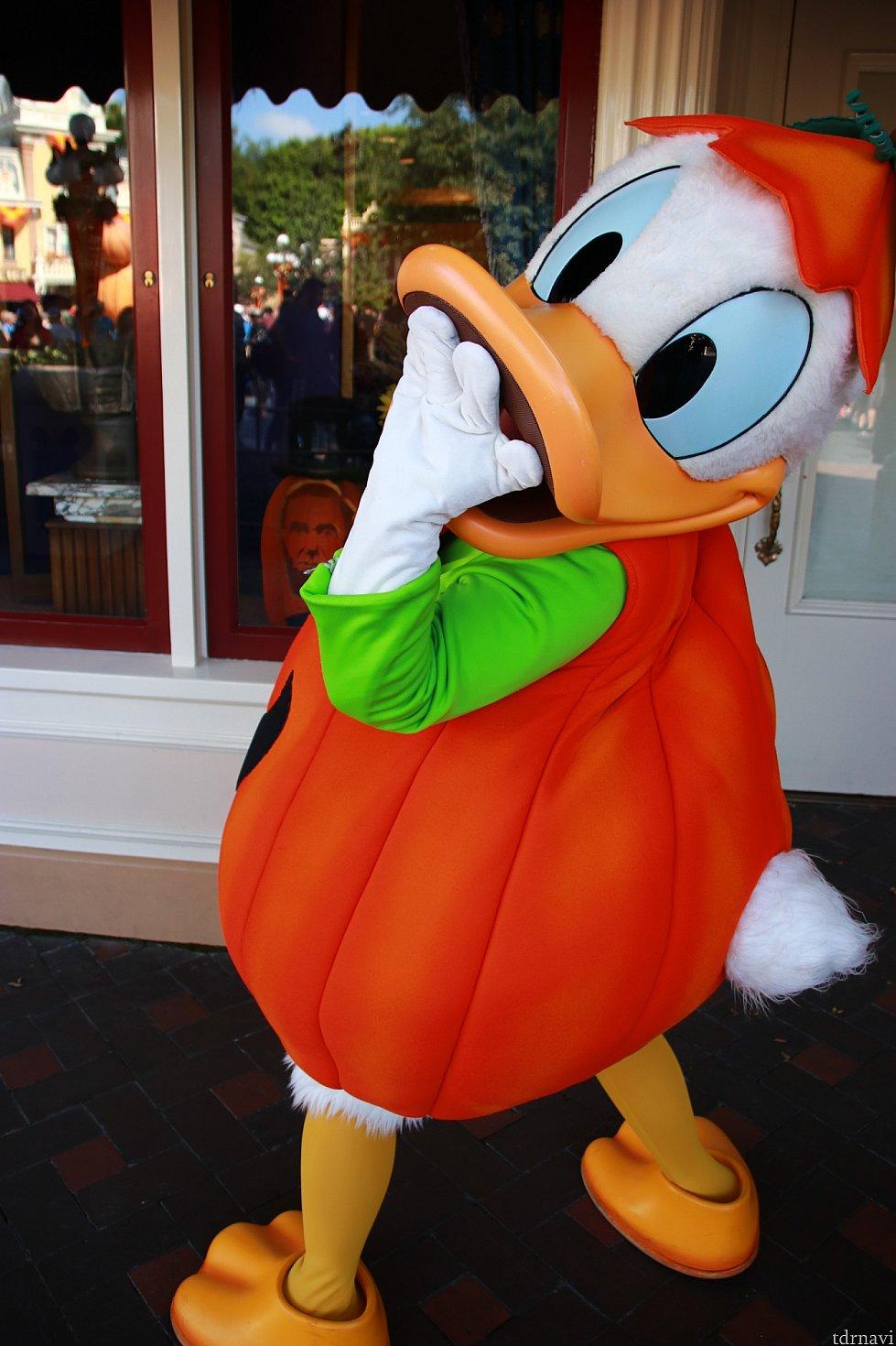 ドナルドは早い時間にしか会えません。アプリよりもキャストの人に来る時間を聞いた方が確実!Halloween Partyでは会えないかも。