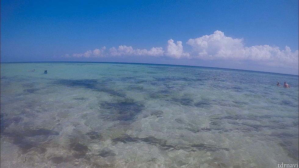 こんな感じの透明度で美しいカリブ海がどこまでも続いています。